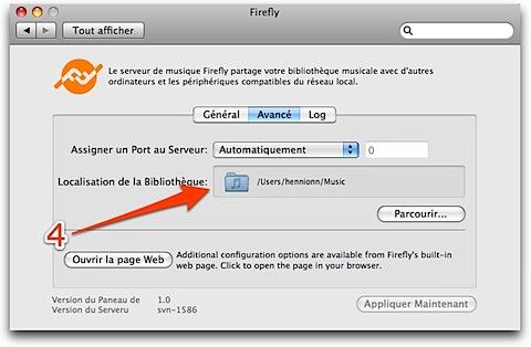 Firefly-1.jpg