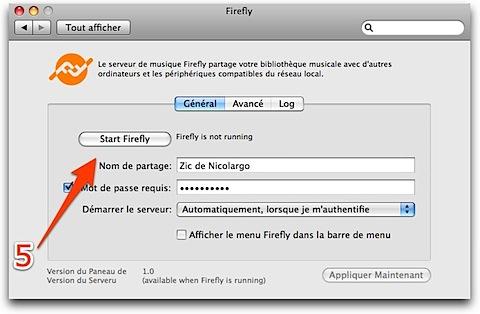 Firefly-2.jpg