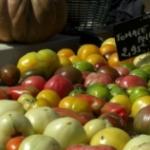 Le panier du marché libre #12